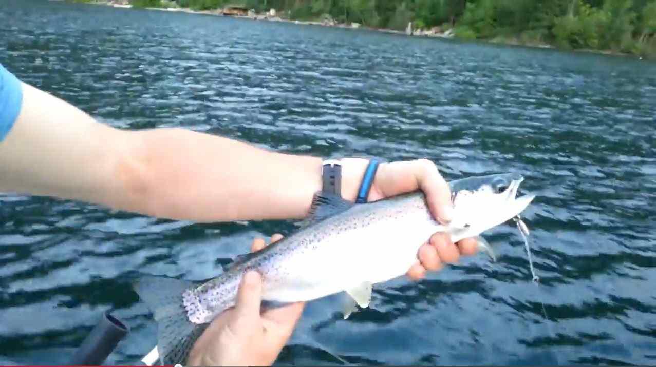 British Columbia Freshwater Fishing Guides