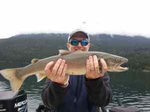 Whistler Bull Trout