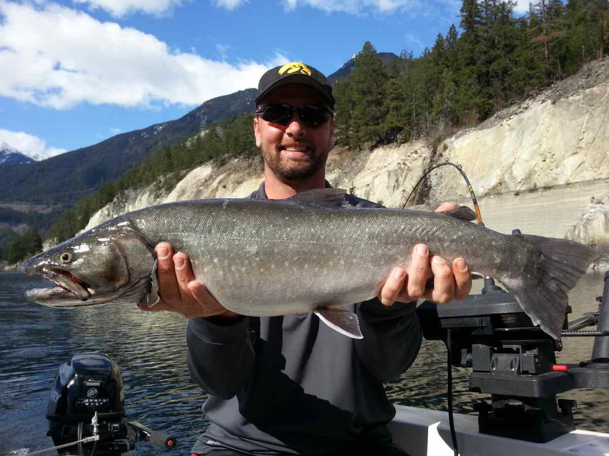 Great bull trout fishing british columbia canada for Good places to go fishing near me