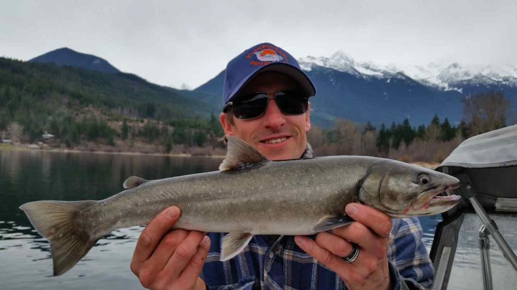Lakes in pemberton and whistler bc are clear of ice for Fishing trips in canada