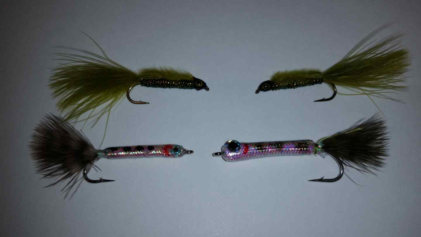 Lakes in pemberton and whistler bc are clear of ice for Fly fishing for salmon