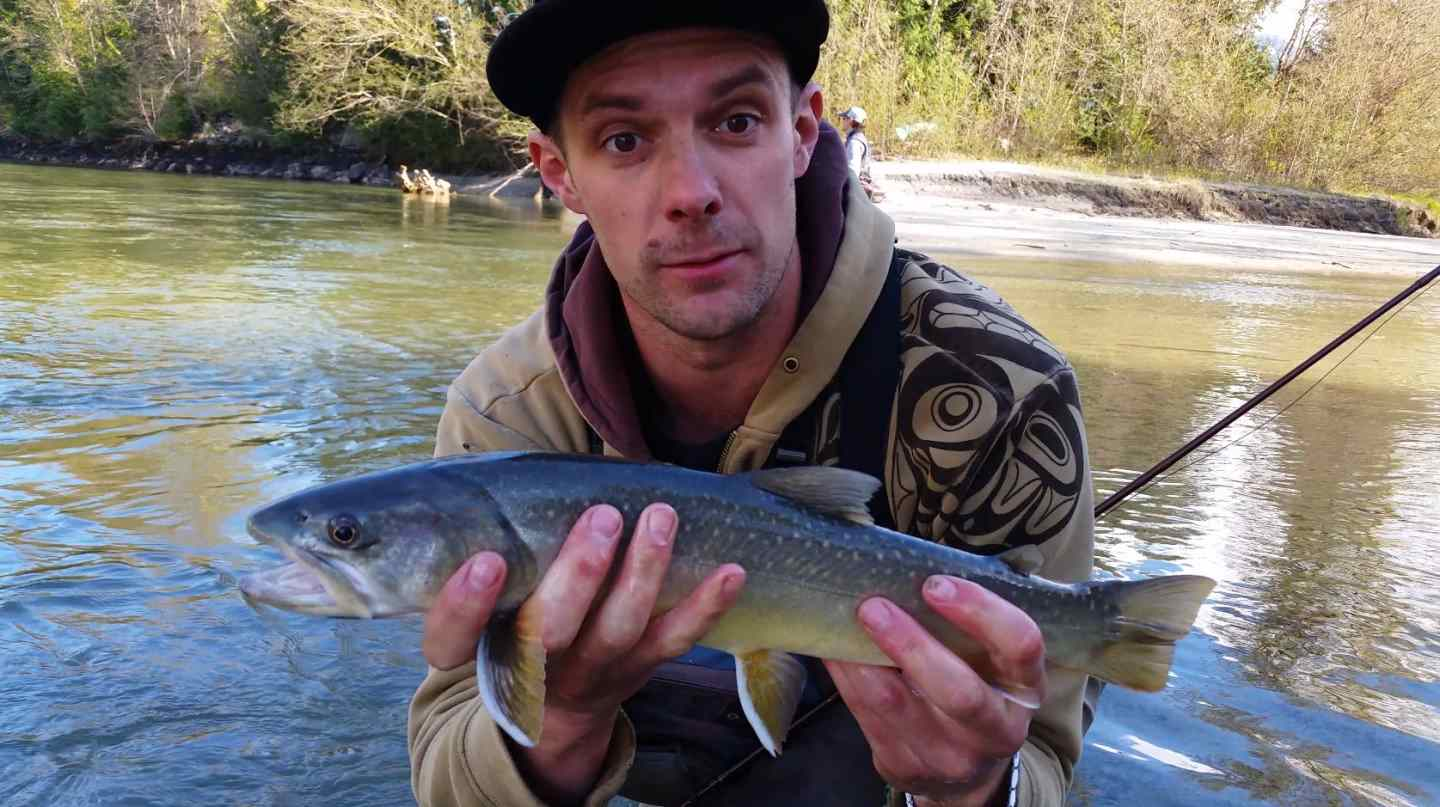 Bc bull trout fishing bc fishing reports pemberton for Trouts fly fishing reports