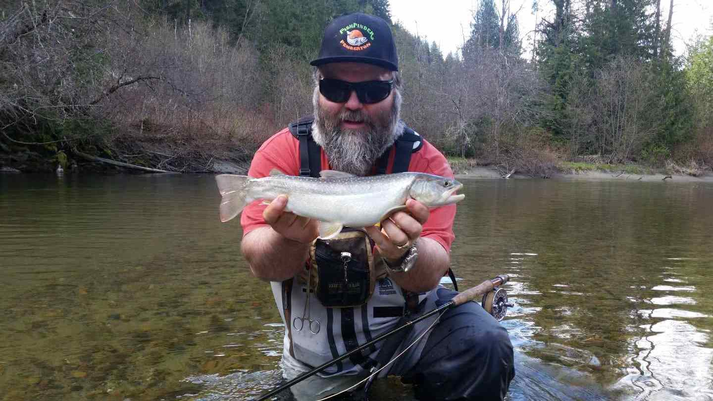 Fly fishing for bull trout in whistler and pemberton bc for Best trout fishing in the us