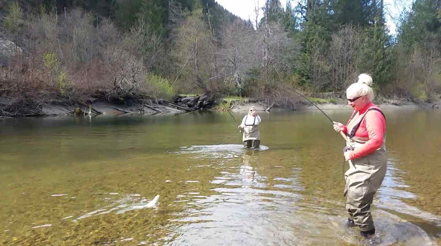 River fly fishing in whistler and pemberton bc canada for River trout fishing