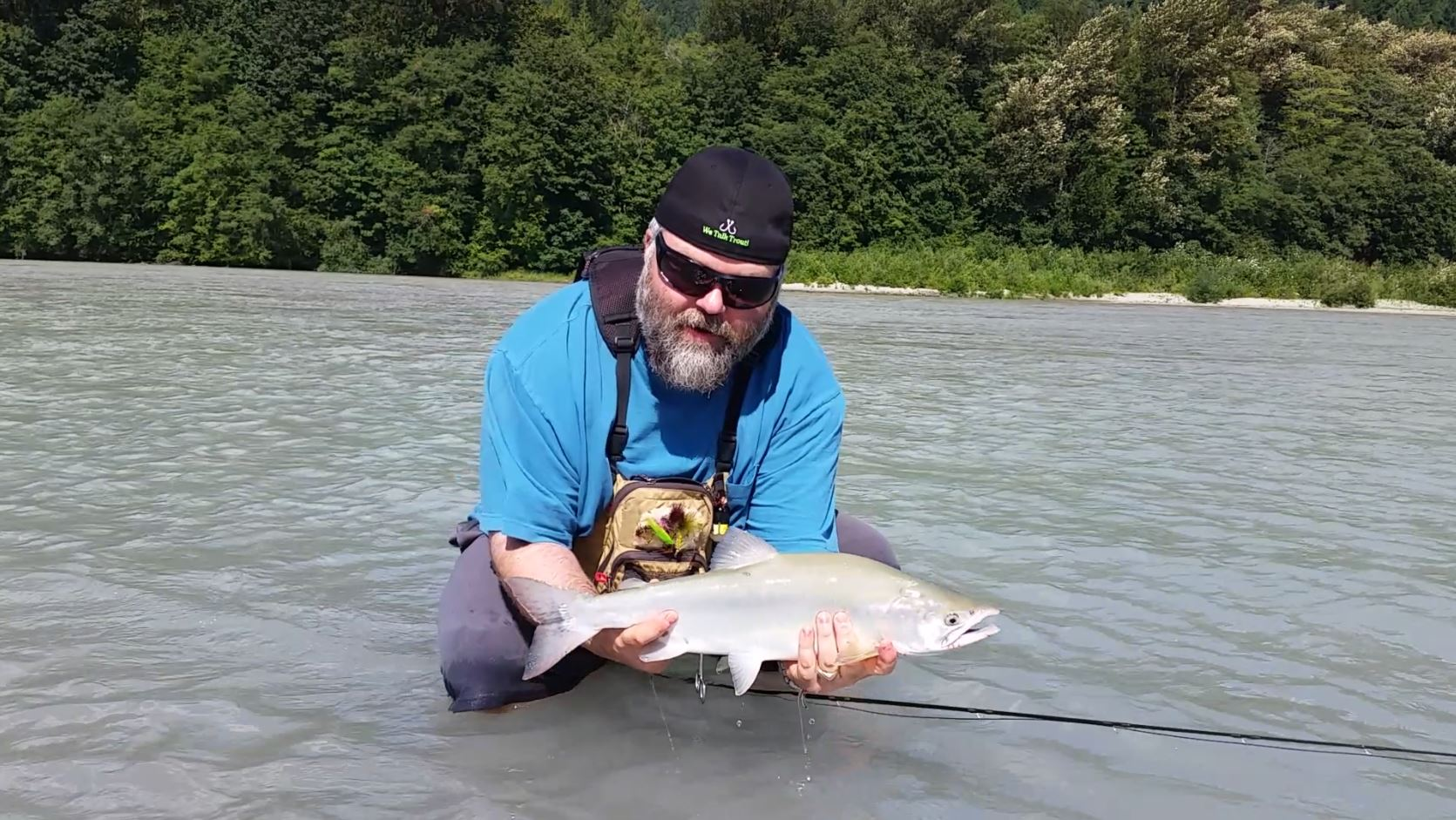 Pink salmon fly fishing tours squamish british columbia canada for Fly fishing for salmon