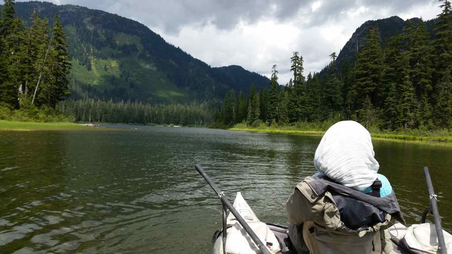 Freshwater fishing reports for squamish whistler and for Fly fishing british columbia