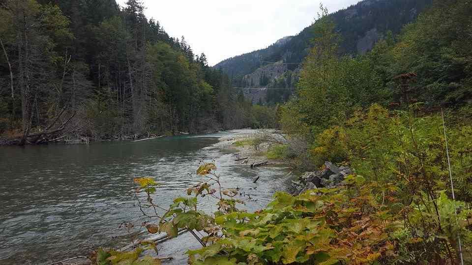 Birkenhead River in Pemberton BC