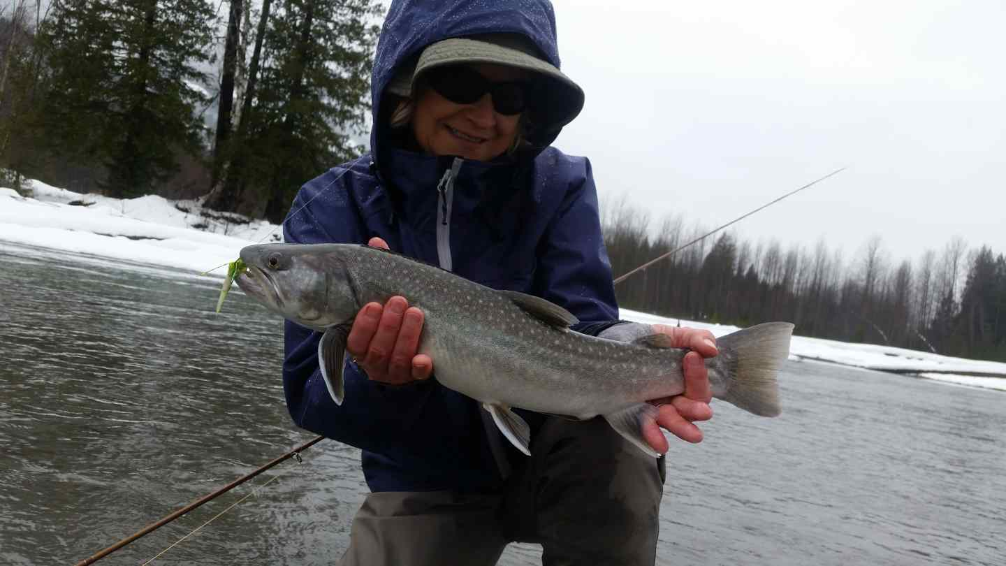 Winter fly fishing upper lillooet river in pemberton bc for Winter trout fishing