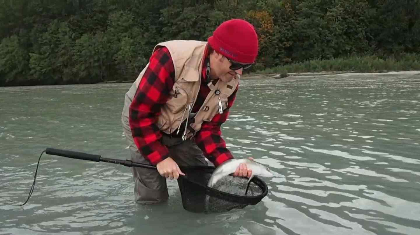 Fly fishing tours in british columbia with pemberton fish for Fly fishing for salmon