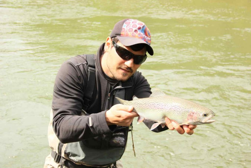 Birkenhead River fly fishing