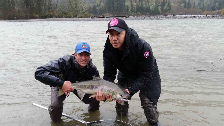 Best Salmon Fly Fishing In Canada Squamish British Columbia