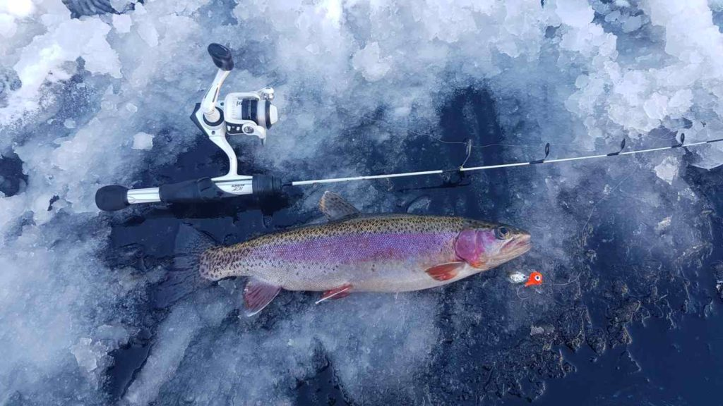 Ice fishing in BC