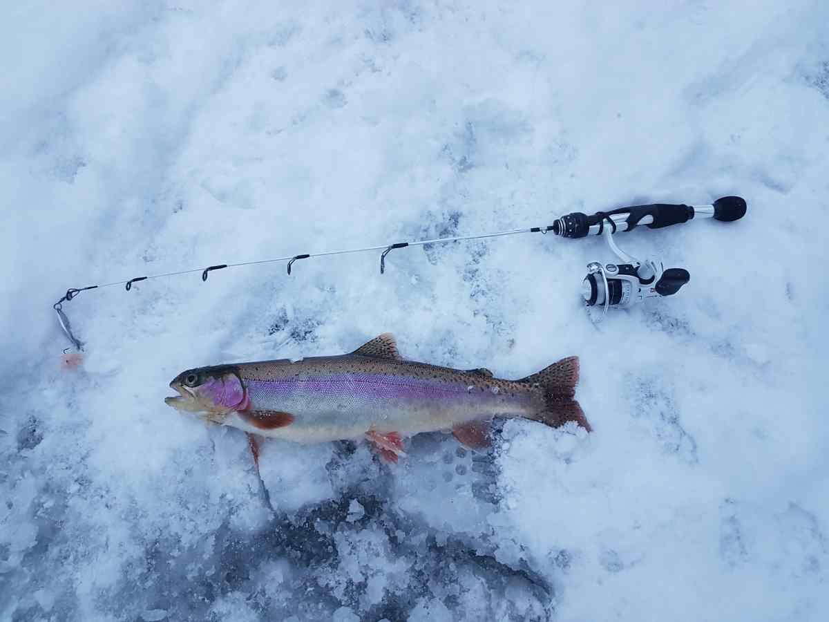 Ice fishing trips in whistler canada for Ice fishing for trout