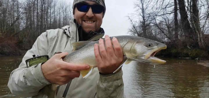 Bull Trout fly fishing in Canada
