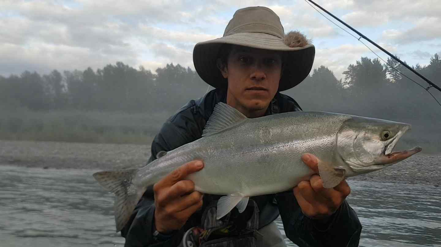 Great pink salmon fly fishing trips in bc canada for Fly in fishing canada