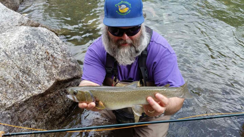 Birkenhead River fly fishing at its best