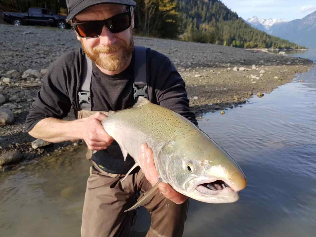 Best fly fishing time of the year for Salmon in British Columbia Canada