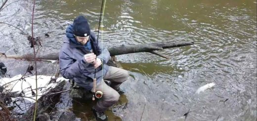 Bc fishing reports pemberton fish finder for Fly fishing british columbia