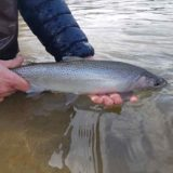 Best Coastal Cutthroat Fishing in Canada