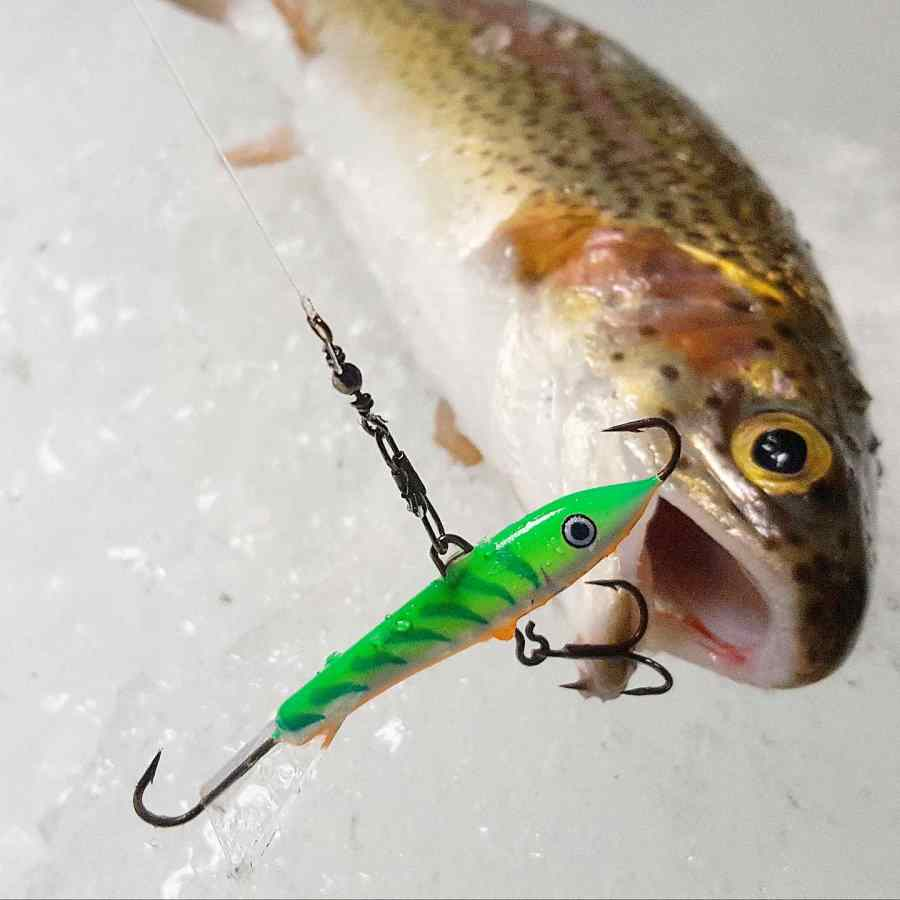 Ice fishing jigs for BC lakes