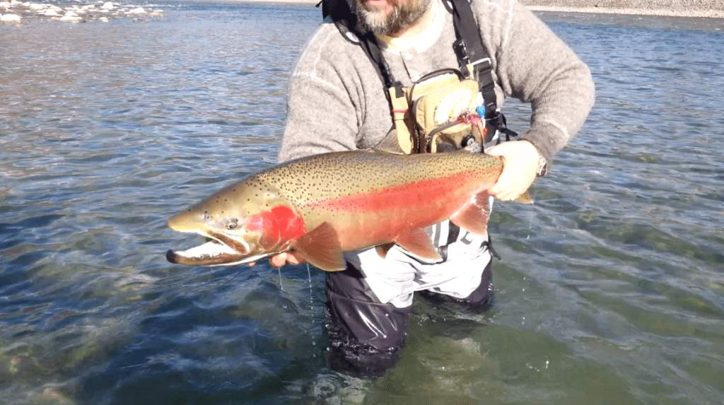 Conservation outdoor recreation education and canadian for Canadian fishing license bc