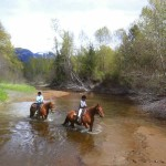 Horseback riding in Pemberton Bc