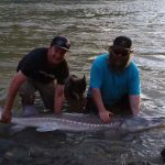 Sturgeon fishing tours in Canada