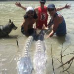 Sturgeon fishing tours in Whistler BC